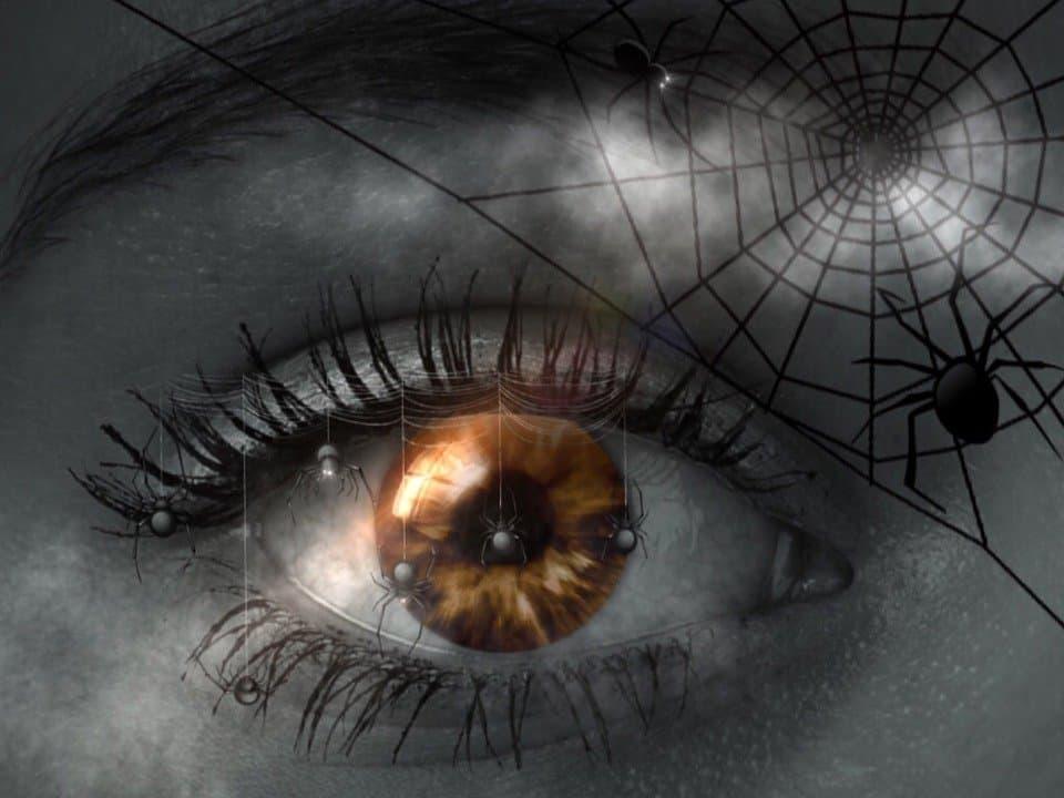 sognare ragni